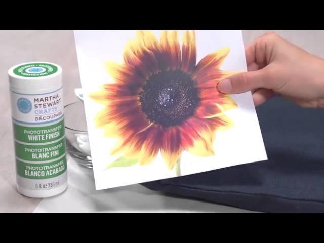 Decoupage avec Martha Stewart Crafts:  Techniques de transfert de photo