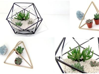 DIY│Geo Terrarium ▵ Alyssia