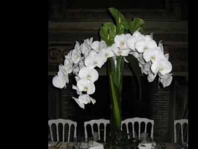 Décoration de tables et de salles de réception - Décoration Mariage