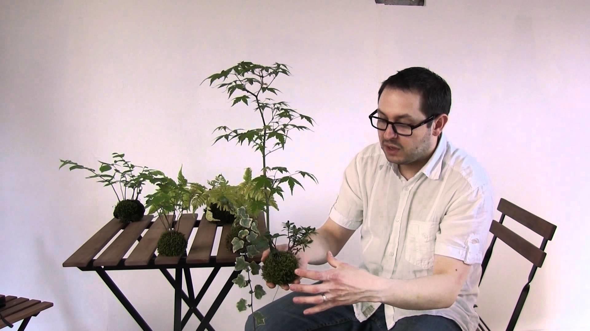 (HD145) création et entretien des kokedama