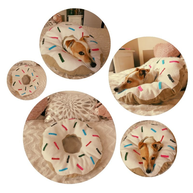[ DIY ] Coussin Donut. Donut pillow