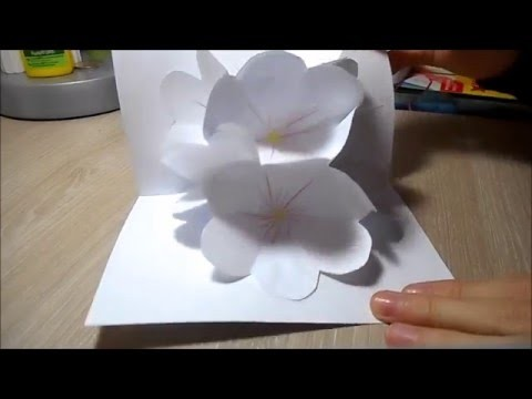DIY:Carte Pop-up Bouquet de Fleurs