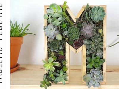 DIY | Tableau végétal de plantes grasses