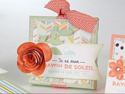 Objet 3D: Boîte insta-enveloppe et cartes-Marika Lemay-www.lamagiedesetampes.com