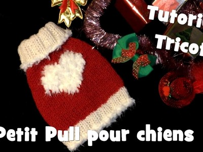 Tutoriel Tricot: Petit Pull Coeur Blanc pour chiens - Knitting Dog Sweater