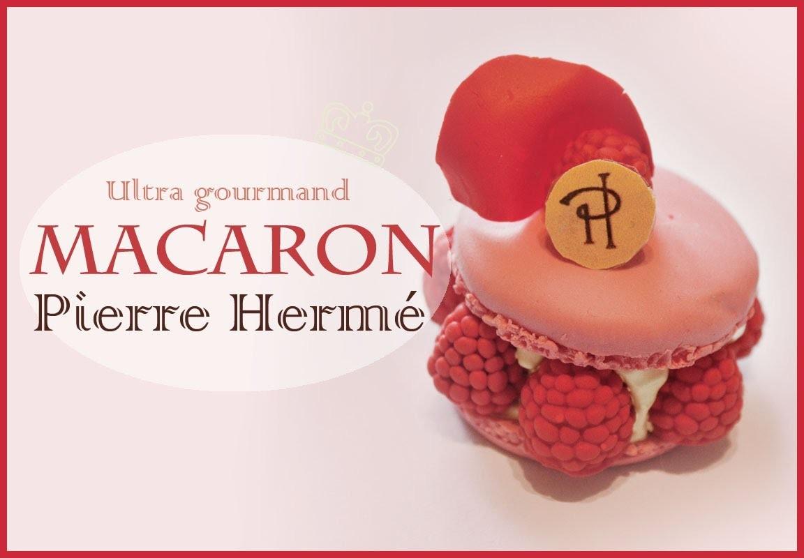 Macaron Ispahan Pierre Hermé en fimo. French Macaron Ispahan Polymer Clay Tutorial