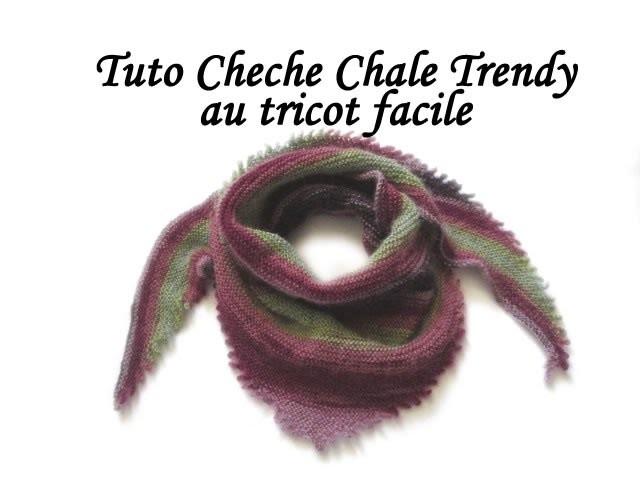 TUTO TRICOT CHECHE CHALE TRENDY BORDURE PICOT AU TRICOT FACILE EASY SHAWL KNIT