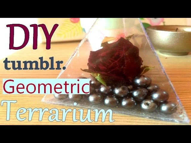 DIY | Easy Geometric Terrarium | Tumblr