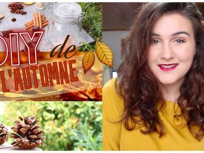 DIY - Déco automne 2015 !