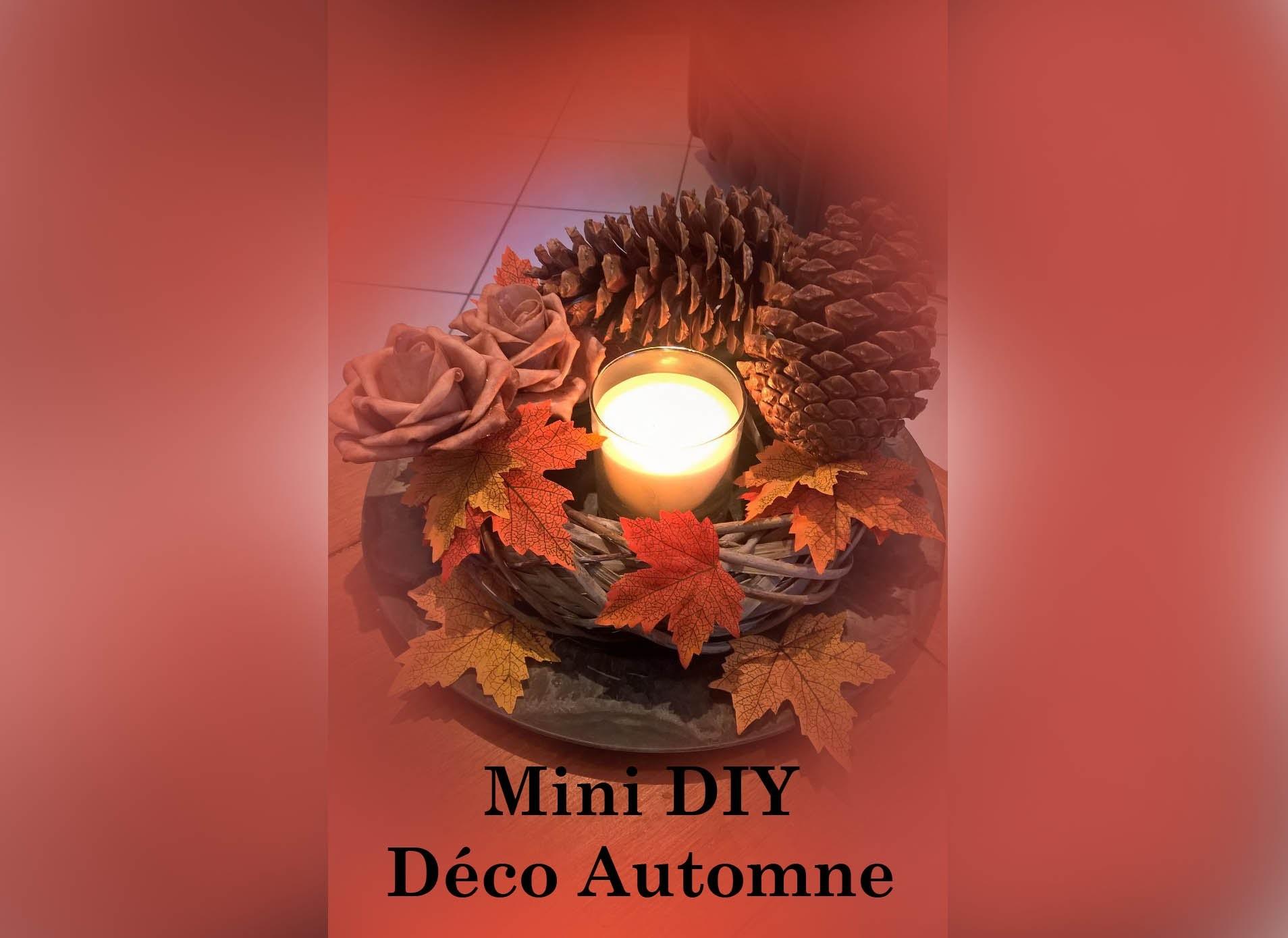Mini DIY Automne 2015