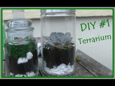 DIY #1 Terrarium fleuri