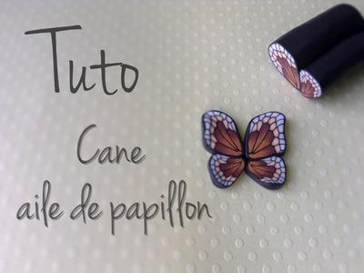 Tuto : cane aile de papillon
