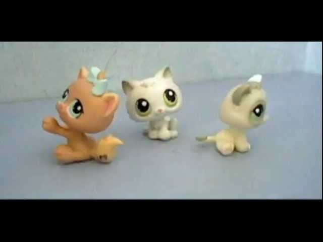 LPS : Stop-Motion