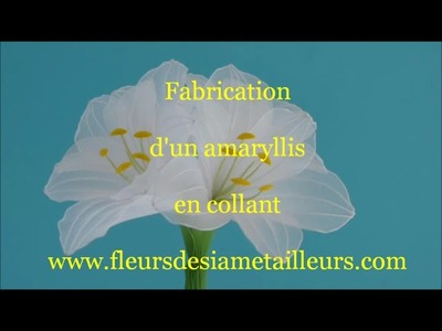 Fabrication d'un amaryllis en collant. How to make a nylon amaryllis
