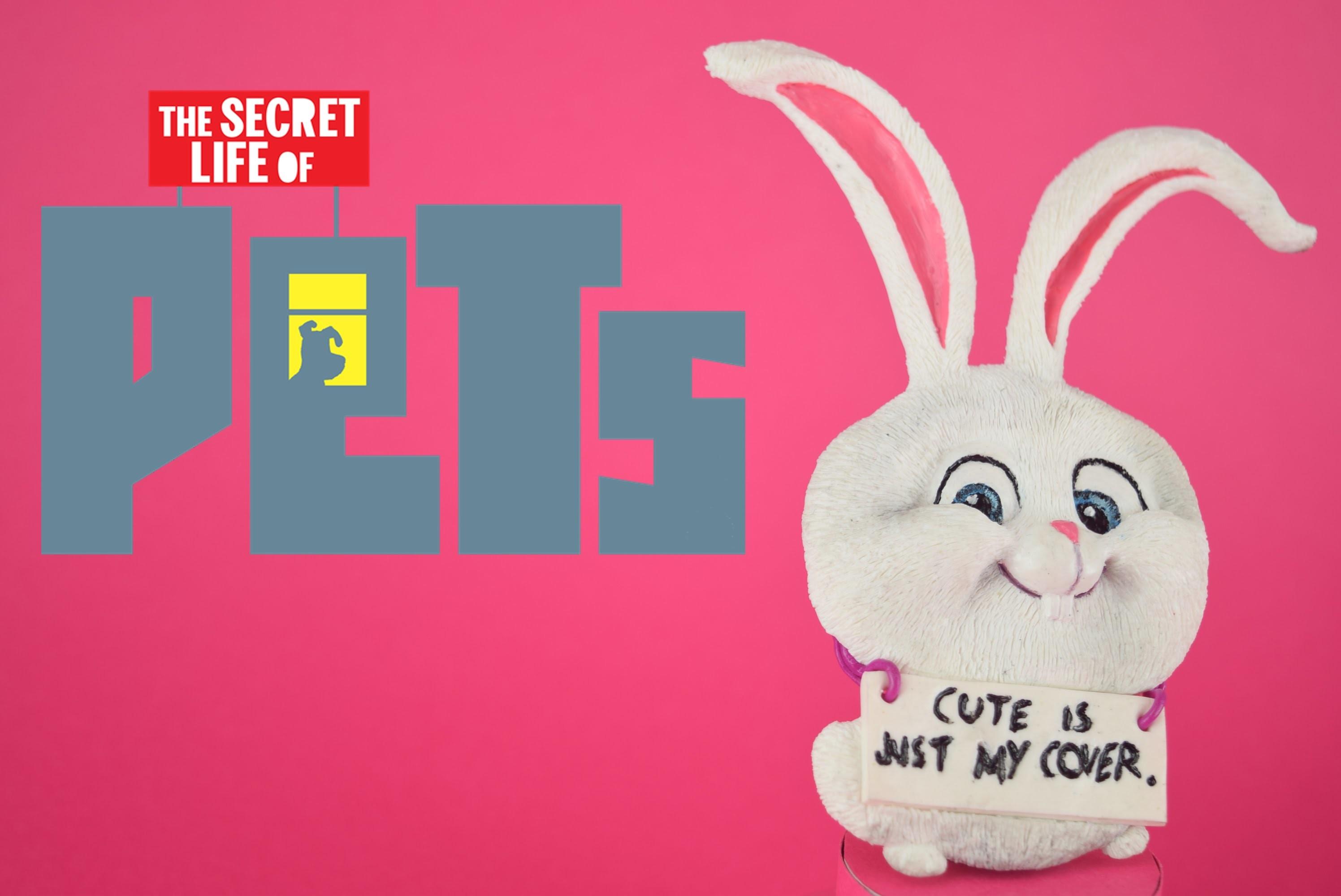 "Fimo ""Comme des bêtes"" - polymer clay ""secret life of pets"""