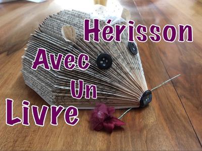 ~DIY~ Hérisson avec un Livre de Poche