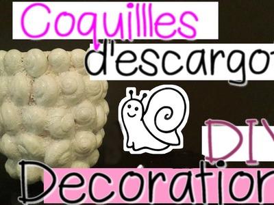 Vase avec coquilles d'escargots vides -DIY- مزهرية باستعمال قواقع الحلزون