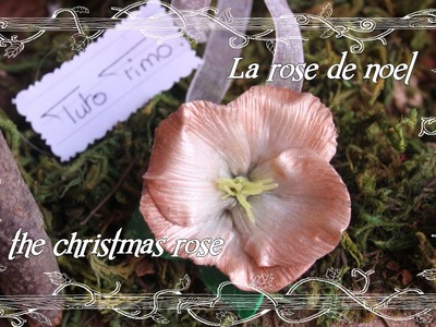 [♥✿ Tuto Fimo : La rose de noel ✿♥] ~ [♥✿ Polymer Clay Tutorial : the christmas rose ✿♥]