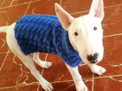 Tuto tricot : Pull chien a torsade. Jersey de perro dos agujas con trenzas