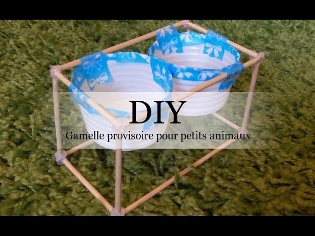 [DIY N°1] Faire une gamelle provisoire pour petits animaux !