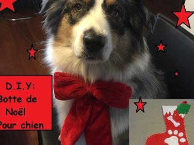 D.I.Y :  Botte de Noel pour chien