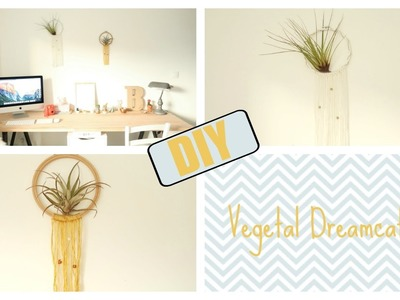 DIY vegetal Dreamcatcher