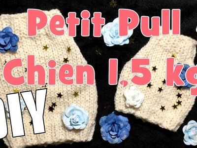 DIY Tricot: Petit Pull pour chiens d' 1,5 kg (taille 2)