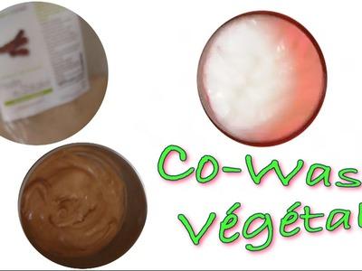 CHEVEUX CRÉPUS : DIY Co-Wash Végétal. No Poo Végétal