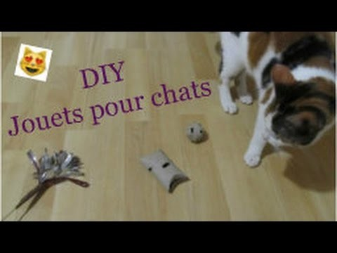 diy jouets pour chats toys for cats just diy. Black Bedroom Furniture Sets. Home Design Ideas
