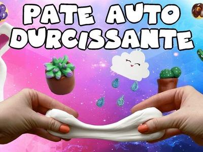 TUTO -  FAUSSE PATE FIMO