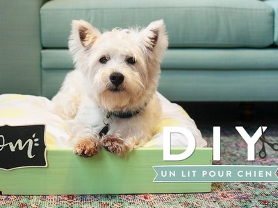 Un lit pour chien - DIY Westwing France